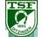 TSF Ditzingen U17