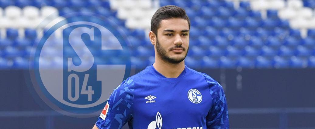 Schalke macht Verpflichtung offiziell