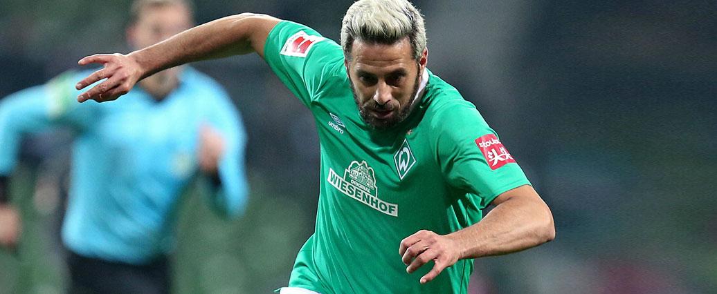 Werder Bremen: Pizarro Comeback nach der englischen Woche?