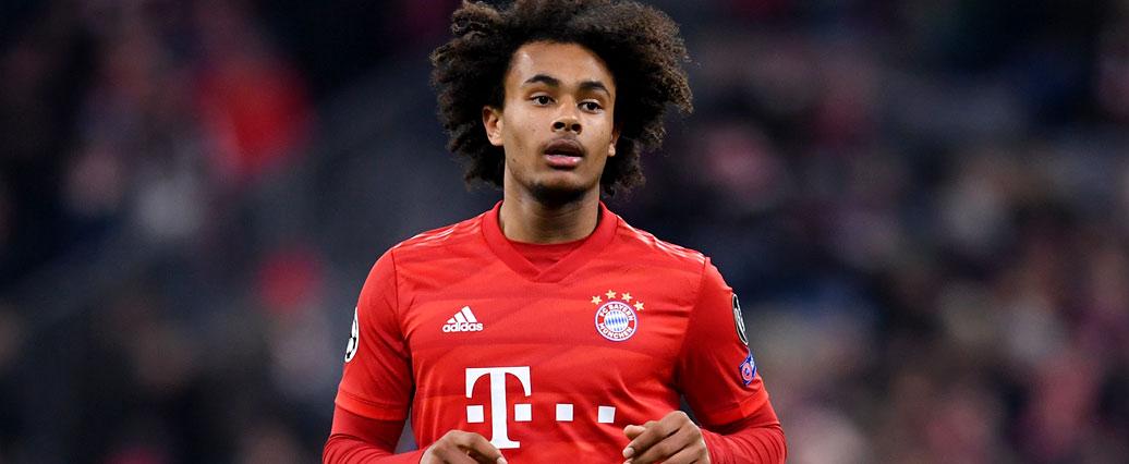 FC Bayern: Joshua Zirkzee kehrt wohl in die Bundesliga zurück