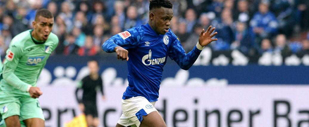 FC Schalke 04: Rabbi Matondo fehlt krankheitsbedingt