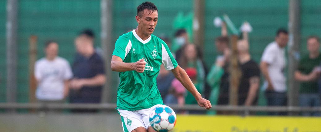 Bayer 04 Leverkusen: Großes Interesse an Werder-Talent Chiarodia?